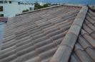 Panoramia Gray TB12  :: Panoramia Grey